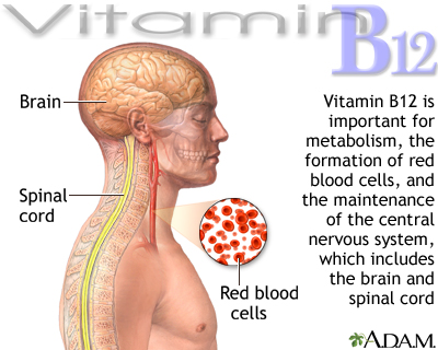 Vitamin B12 benefits