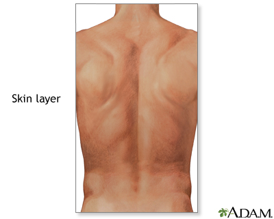 Step 2: Know your back anatomy - Penn State Hershey Medical Center